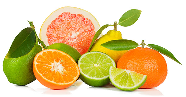 The wonderful scents of Lime, Lemon, Orange and Grapefruit are starting to take over!